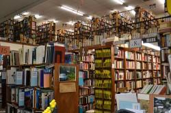 Millenials Are Buying More Books statistics