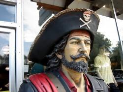 Three Out of Four eBook Pirates Prefer Calibre calibre humor