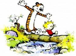 Calvin---Hobbes-calvin--26-hobbes-254155_1024_768[1]