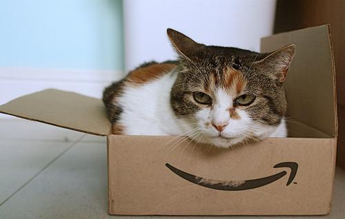 Amazon Secures the DotFree Domain Amazon