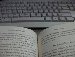 eBook Snobbery Run Amok, or Yes, a PDF is Still an eBook Epub