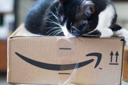 Amazon Revenue Beats Estimates as Cloud Sales Surge Amazon