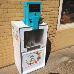 Tallapoosa County, Alabama Gets Its First Little Free Library Libraries