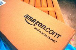 Petty Inconvenience is Next to Godliness Amazon
